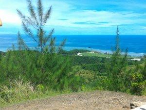 丘からの眺め(その②)